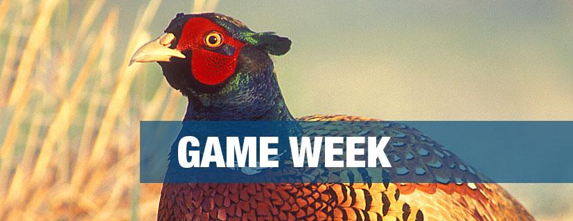 Game-Week