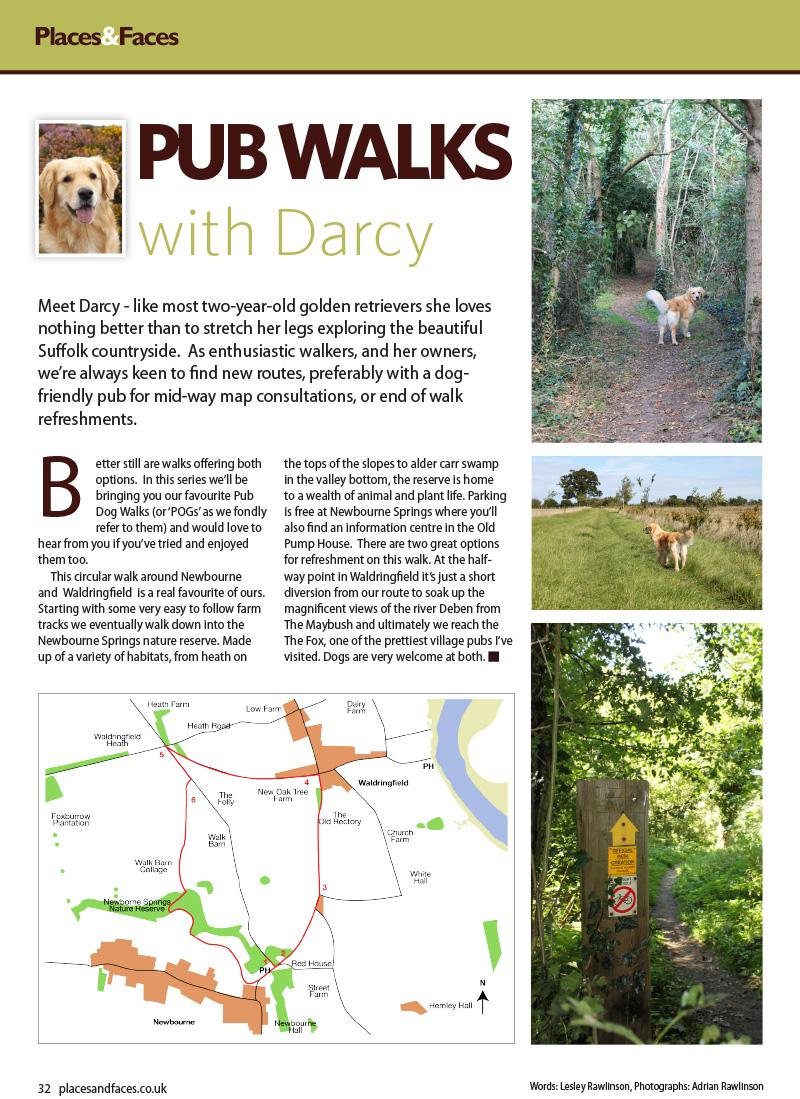 dog_walk_newbourne-1